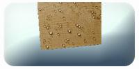 Защита дерева от влаги, древесины, деревянных изделий и конструкций. Гидрофобное нанопокрытие.